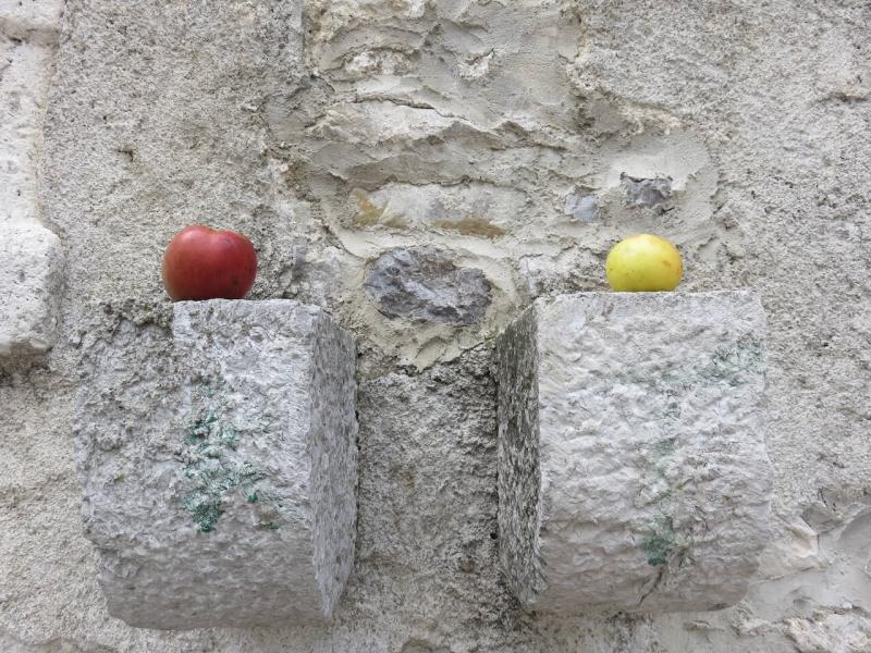 due mele su un muro di una casa di Andreis