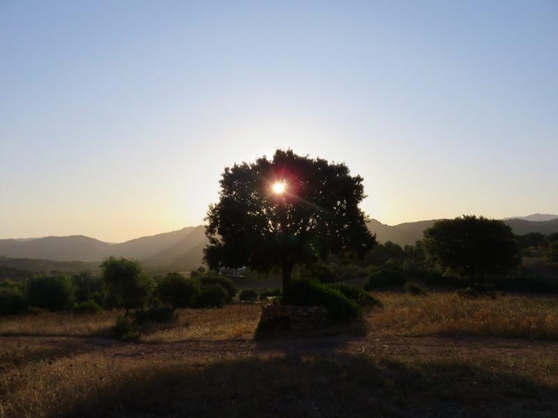 sardegna insolita, alba a monte ruiu, Azzanì