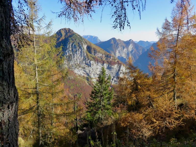 boschi d'autunno a Cava Buscada sopra Erto