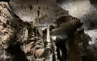 grotte di villanova, stalattiti in una grotta del Friuli