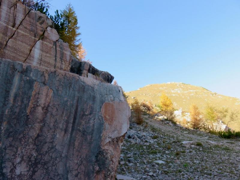 marmo rosso ammonitico a Cava Buscada sopra Erto, Dolomiti Friulane