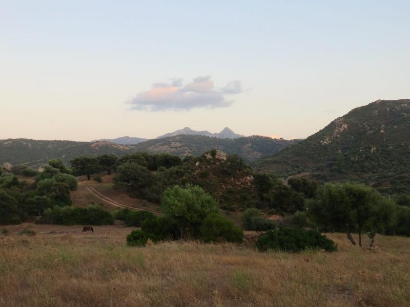 casa vacanze Golfo Aranci, Panorama entroterra Sardegna, moneruiu nature house