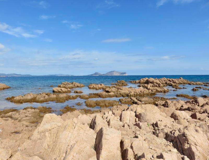 cosa vedere vicino a loiri porto san paolo, isola di tavolara, sardegna insolita