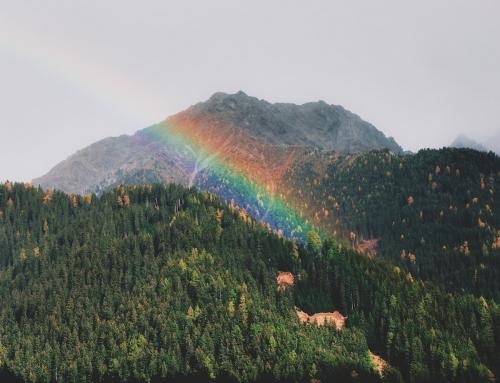 I guerrieri dell'arcobaleno. Racconti di cura