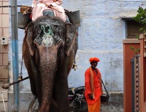 Darśan, uno sguardo sull'India. Un libro ed un'intervista, prima parte