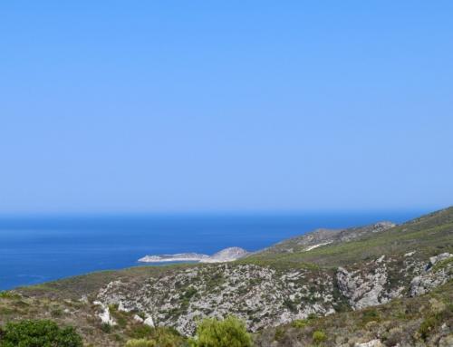 Zante non turistica. Cosa fare e non fare in un'isola della Grecia. Prima parte