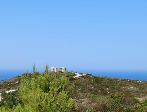Zante non turistica. Cosa fare e non fare in un'isola della Grecia. Seconda parte